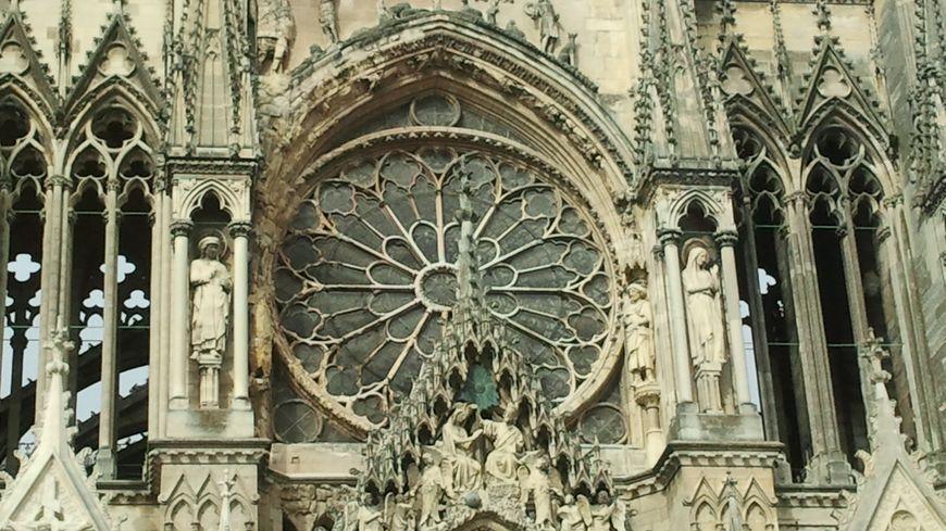 Rose de la cathédrale