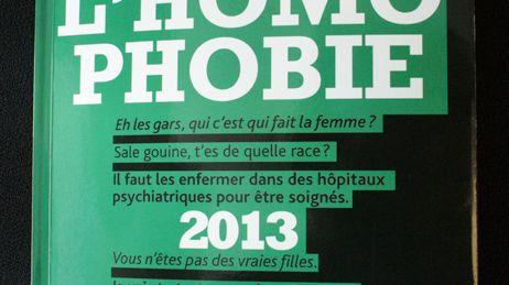 Rapport sur l'homophobie