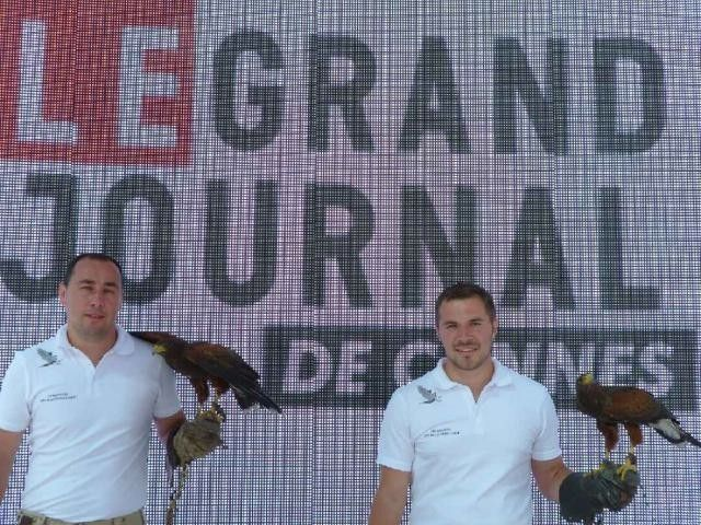 Le fauconnier de la Drôme prend la pose au Grand Journal à Cannes.
