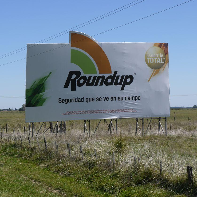 Des Argentins dénoncent les méfaits du Roundup, l'herbicide de Monsanto.