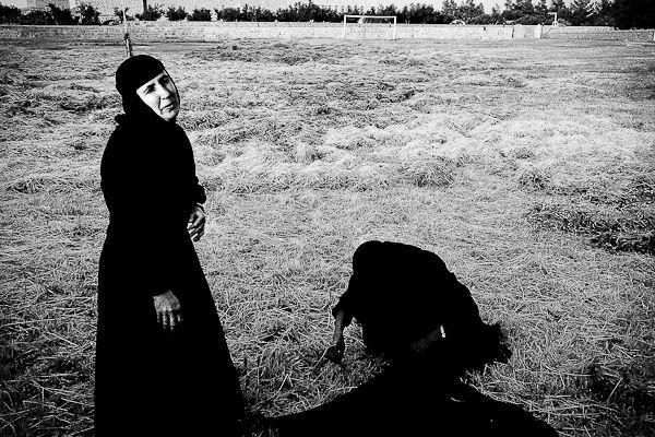 La cueillette des pistcahes avec les religieuses