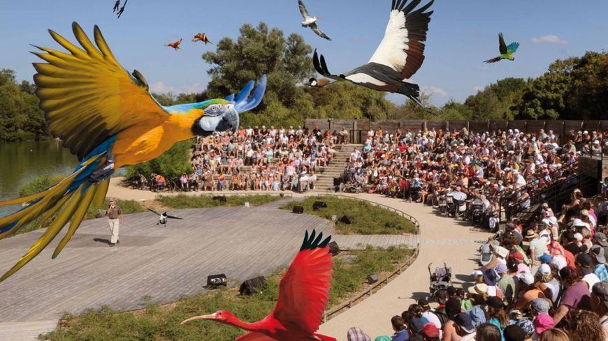 Gagnez votre séjour au Parc des oiseaux