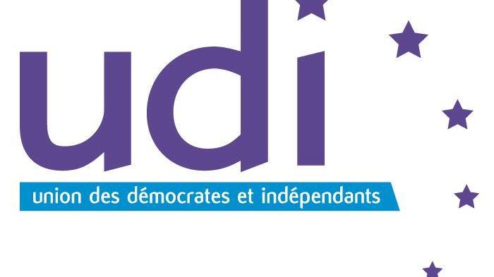 La question du jour: comment les centristes de l'UDI 31 vont-ils se positionner pour les municipales 2014 ?
