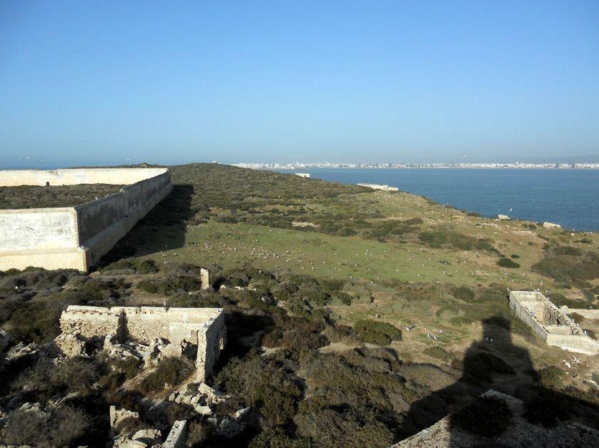 Essaouira,  vue depuis l'île de Mogador