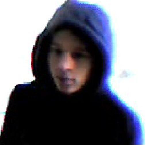 Photo suspect rumeur internet Alsace appel à témoin carrée