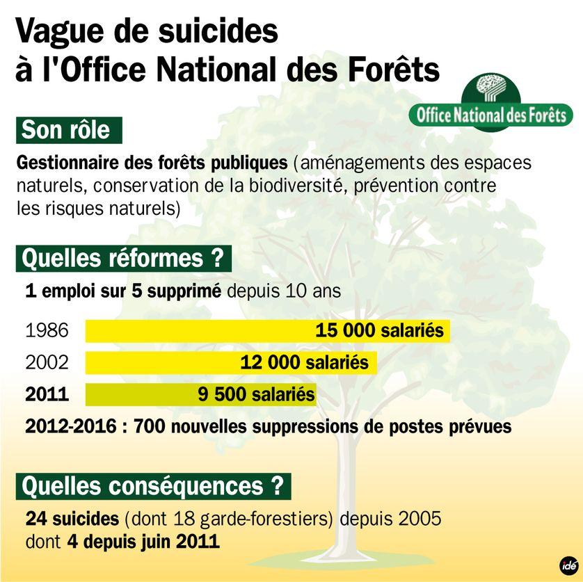 Vague de suicides à l'Office national des forêts