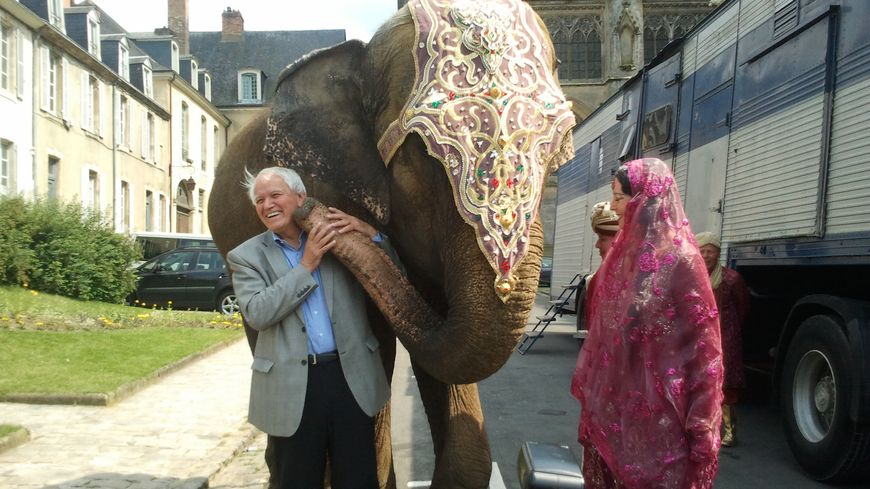 elephant boulard