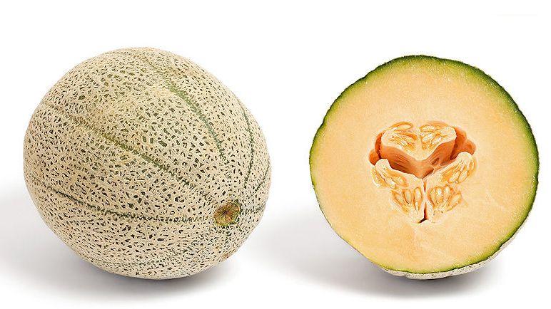 melon du vaucluse 9 lettres