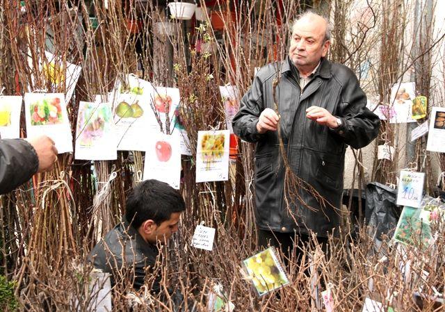 Un marché aux fleurs à Sofia