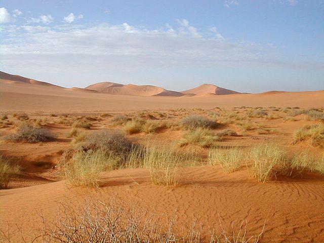 Le désert près de Tamanrasset en Algérie