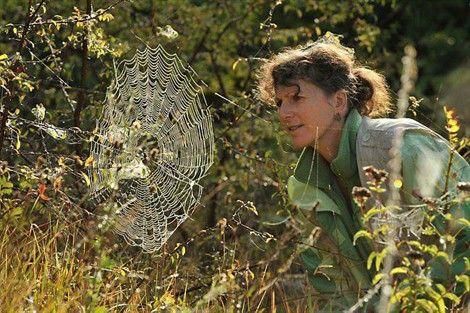 Cristine Rollard observant une épeire