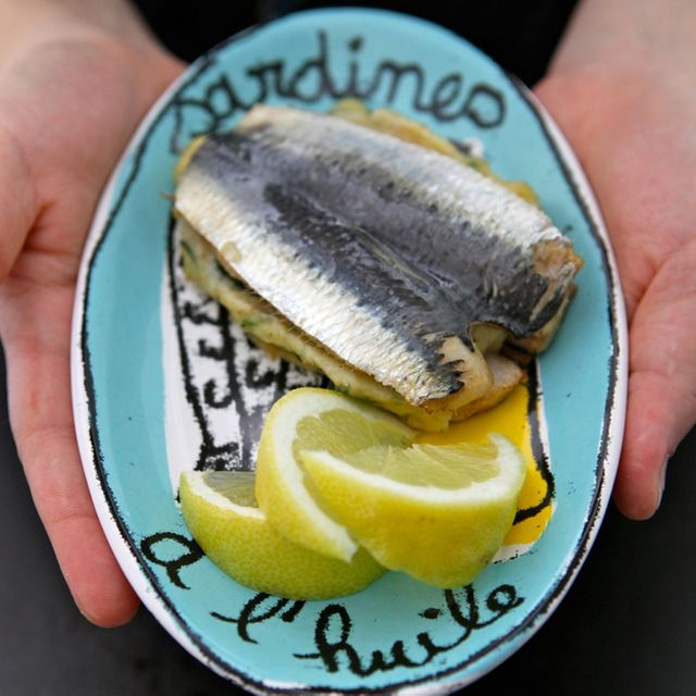 sardine 2