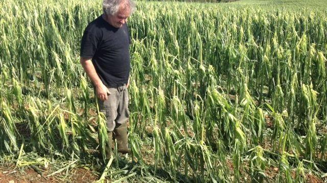 Un éleveur d'Azerat en Dordogne constate les dégâts après les orages
