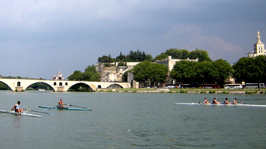 Avirons sur le Rhône devant Pont Avignon