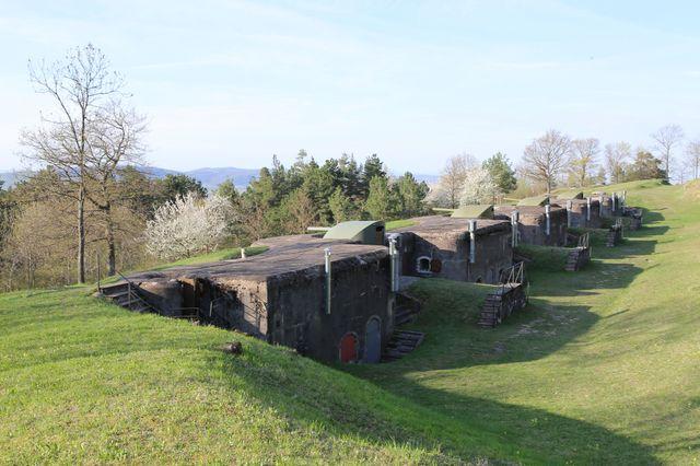Vue du Fort de Mutzig