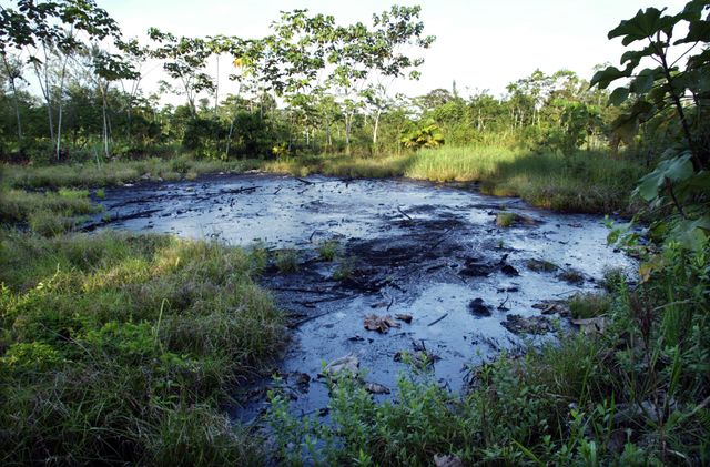 Des forages en Amazonie équatorienne