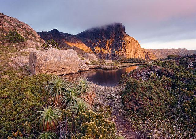 Parc national Southwest en Tasmanie