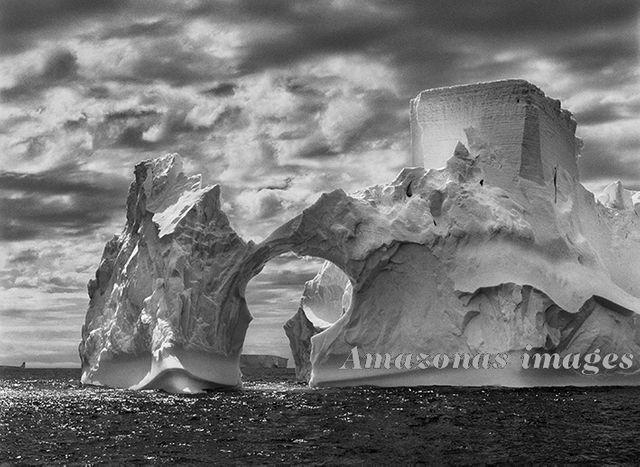 Iceberg entre l'île Paulet et les îles Shetland du sud dans la mer de Weddell. Péninsule Antarctique, 2005.