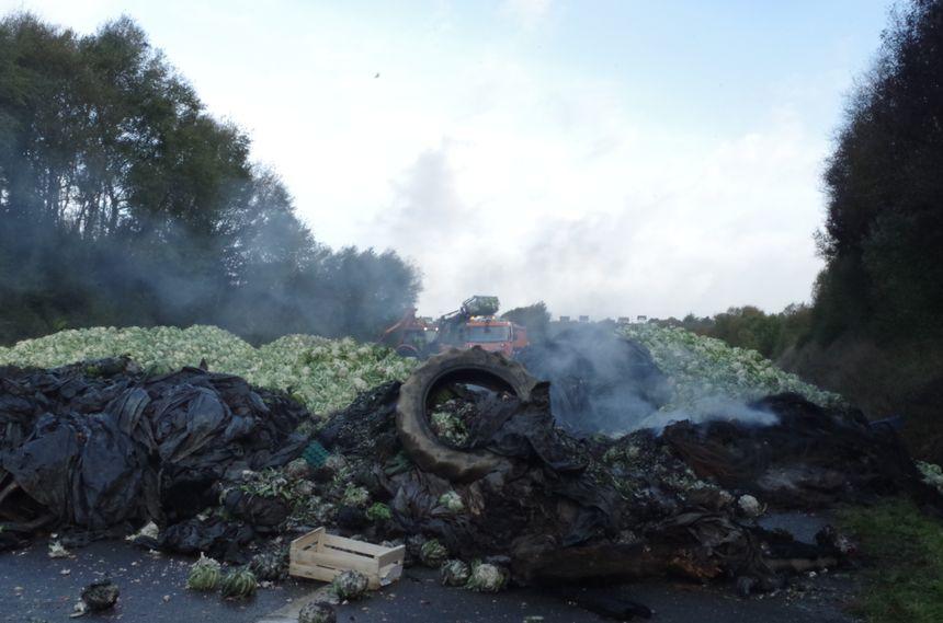 250 tonnes de choux-fleurs déversés sur la nationale 165