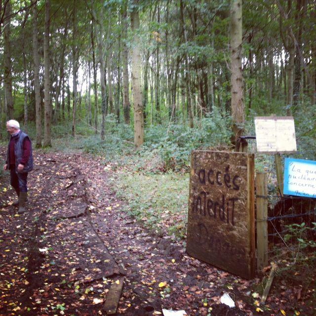 Le bois de Jean-Claude Bossard fut pendant plusieurs mois le lieu de la pédagogie de la lutte anti-THT.