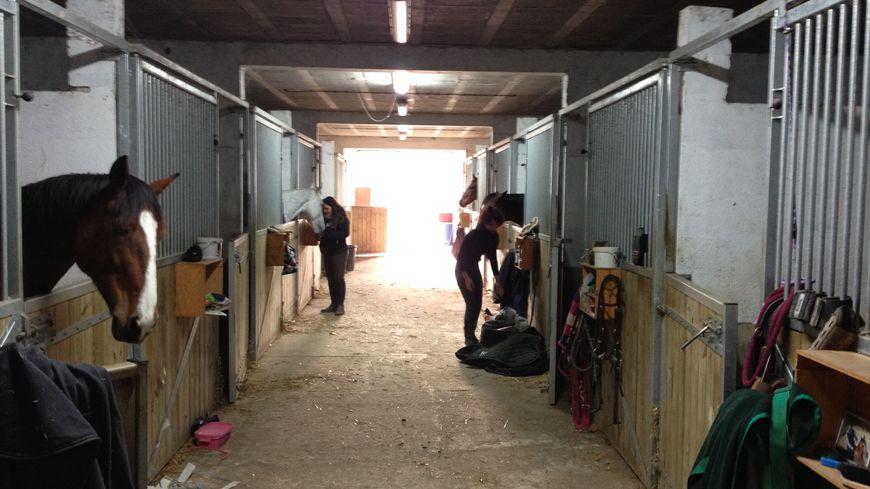 Les cours du centre équestre de Saint-Caprais-de-Bordeaux seront-ils plus chers à cause de la TVA ?