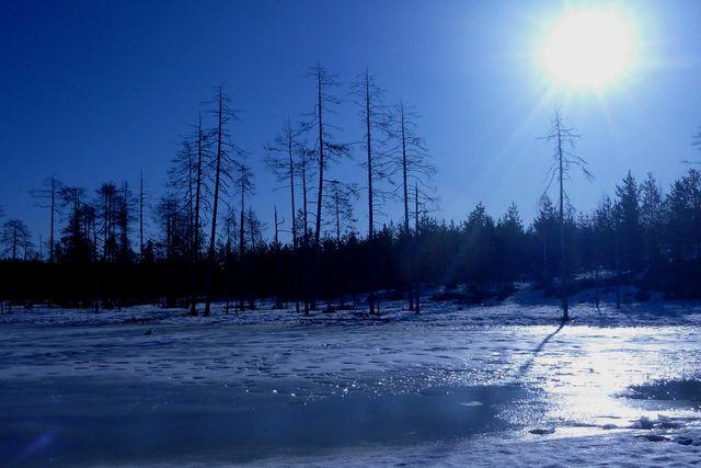 Paysage de Finlande à l'automne