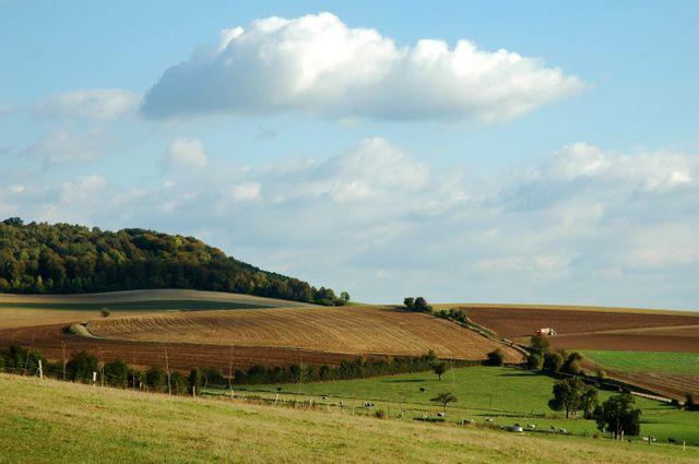 Neufchâtel-en-Bray campagne environnante