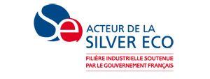 Logo Silver Economie