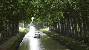 Le canal du Midi : bien plus qu'une simple voie d'eau.
