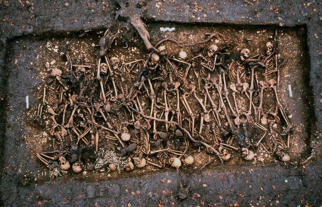 La sépulture d'Alain Fournier et des hommes du 288e régiment tombés en septembre 1914 à Saint-Rémy-la-Calonne