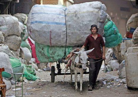 Un chiffonnier du Caire