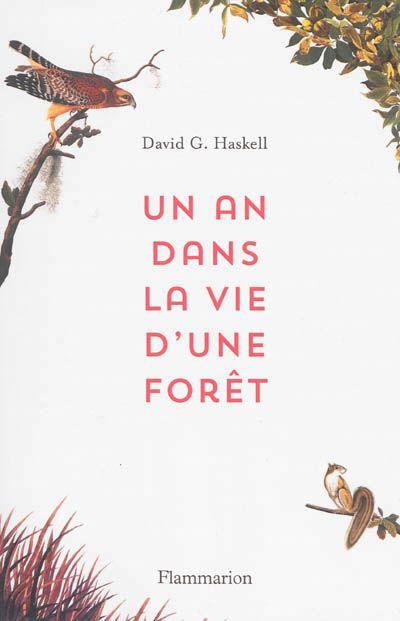 Un an dans la vie d'une forêt de David G. Haskell (Flammarin)