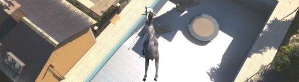 Goat Simulator, le jeu vidéo qui rend chèvre