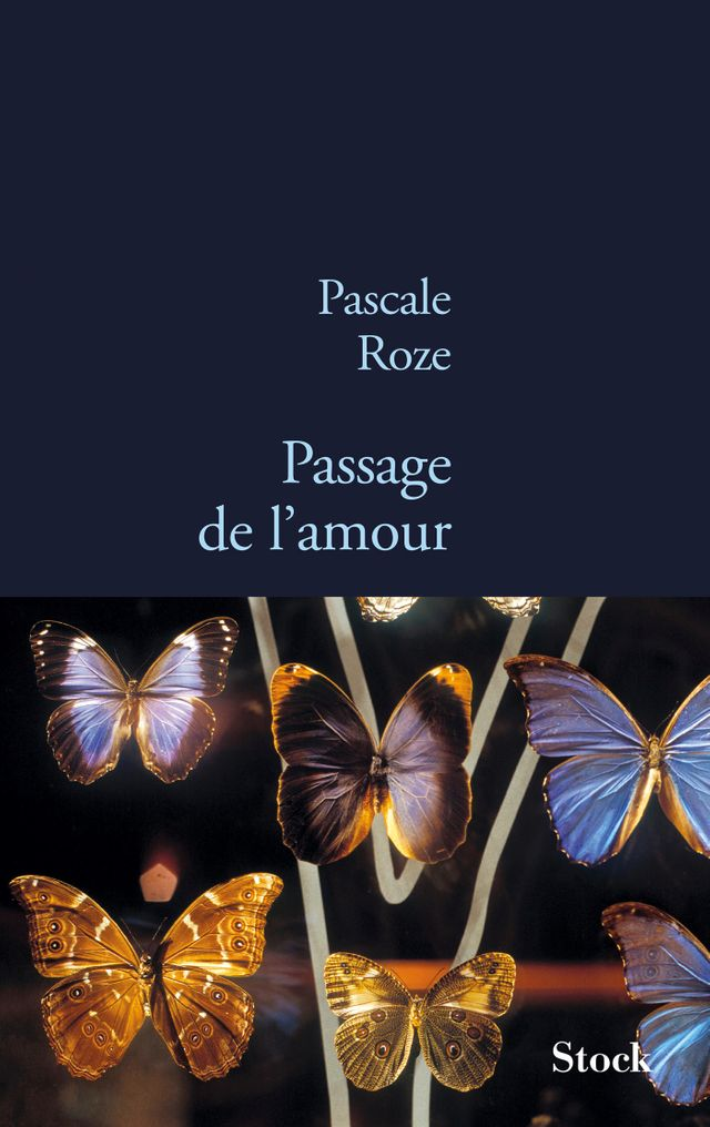 Passage de l'amour » un recueil de nouvelles de Pascale Roze, publié chez Stock