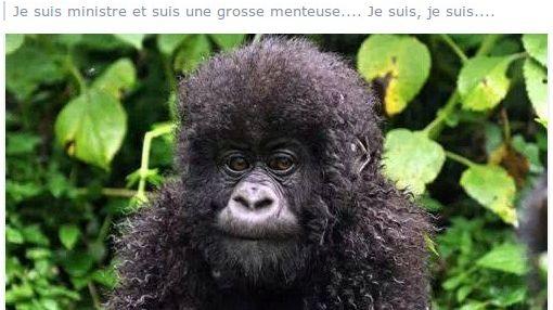 Christiane Taubira comparée à un singe sur le compte Facebook d'une élue de l'Hérault - capture d'écran