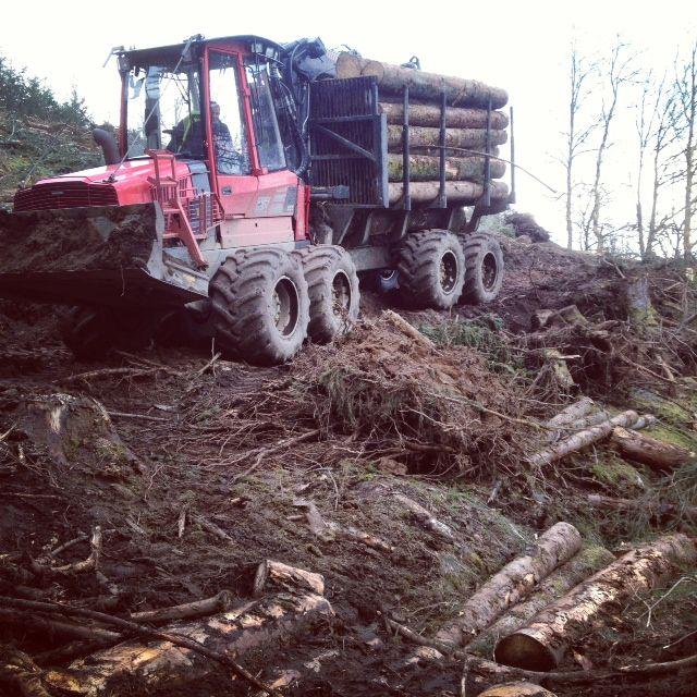 En 2011, la récolte de bois en Limousin représentait 2 millions de mètres cube
