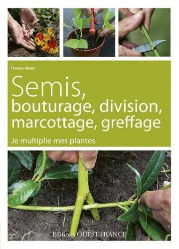 semis, bouturage, division, marcottage, greffage
