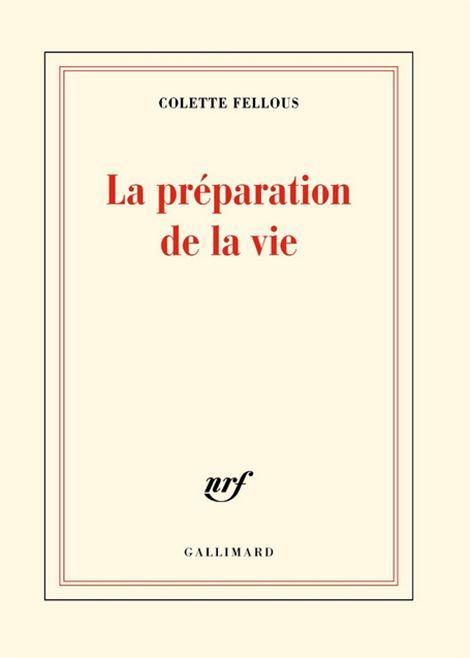 «La Préparation de la vie» de Colette Fellous
