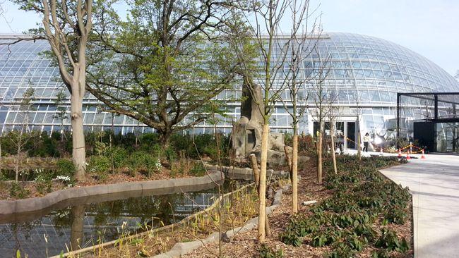 Zoo de Vincennes. La serre tropicale