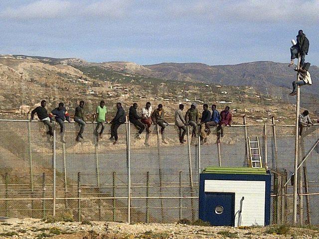 Migrants sur l'une des clôtures de l'enceinte de Melilla