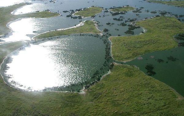 Le Pantanal DR