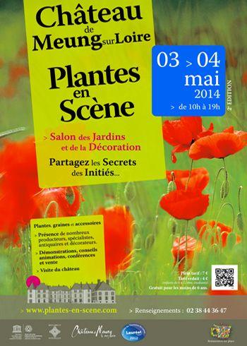 plantes en scene