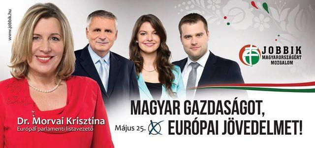 """L'une des affiches pour les européennes.""""Une économie hongroise, un ave"""
