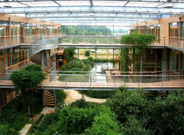 Institut de recherche sur la forêt et la nature-IBN Stefan Behnisch, Wageningen, Pays-Bas (1993 - 1998) - Maître d'ouvrage :