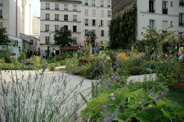 Jardin partagé du Poireau Agile à Paris