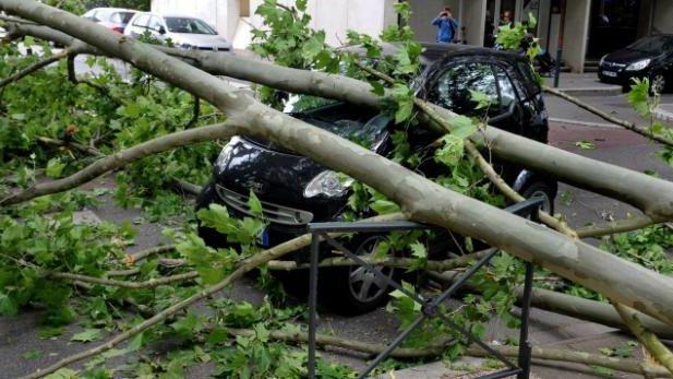 Le vent a causé de nombreux dégâts, comme ici à Toulouse (qui n'était pas concernée par l'alerte orange)