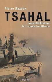 Tsahal, nouvelle histoire de l'armée israélienne