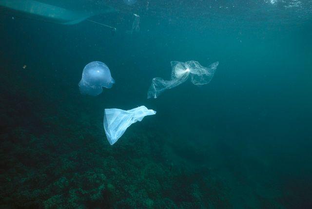 Plastiques dans l'océan