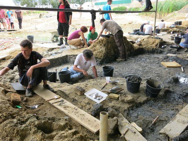 Des ateliers pour faire découvrir aux enfants la paléontologie