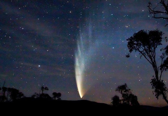 La comète McNaught